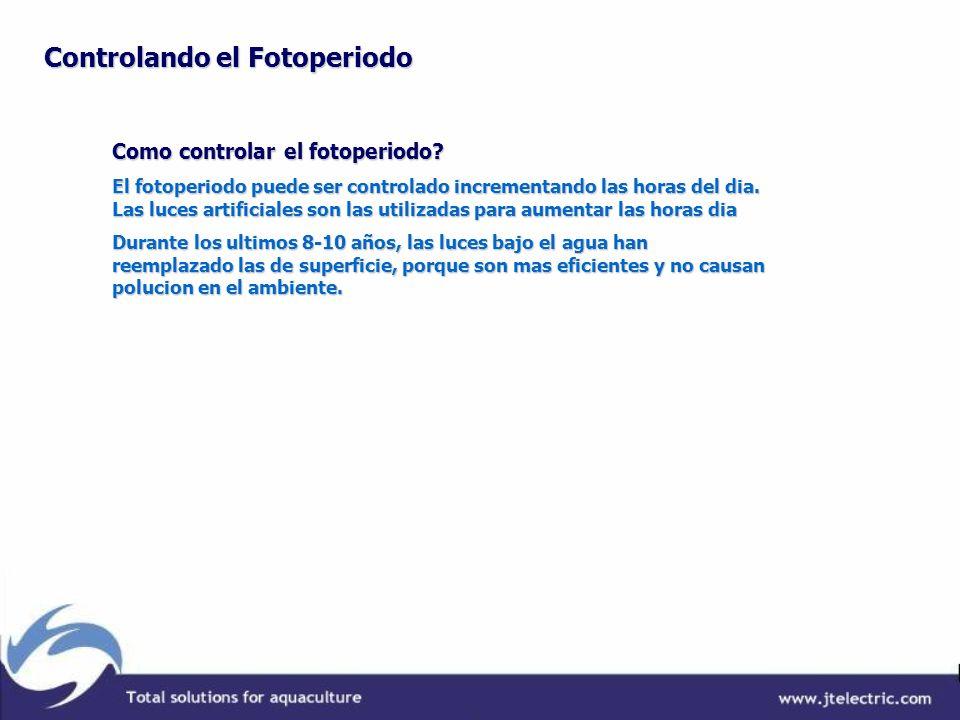 Como controlar el fotoperiodo? El fotoperiodo puede ser controlado incrementando las horas del dia. Las luces artificiales son las utilizadas para aum