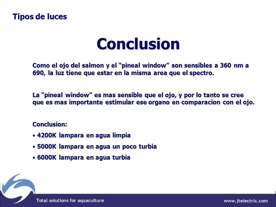 Conclusion Tipos de luces Como el ojo del salmon y el pineal window son sensibles a 360 nm a 690, la luz tiene que estar en la misma area que el spect