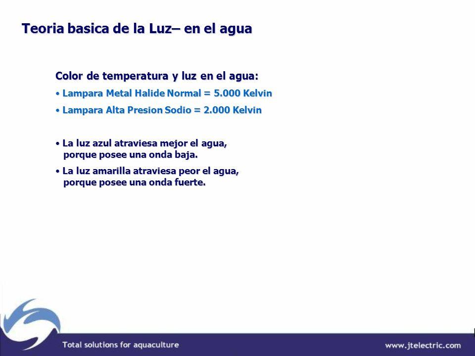 Teoria basica de la Luz– en el agua Color de temperatura y luz en el agua: Lampara Metal Halide Normal = 5.000 Kelvin Lampara Metal Halide Normal = 5.