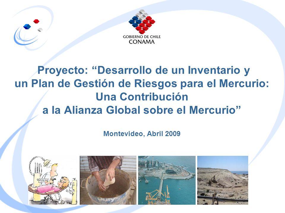 Proyecto: Desarrollo de un Inventario y un Plan de Gestión de Riesgos para el Mercurio: Una Contribución a la Alianza Global sobre el Mercurio Montevi