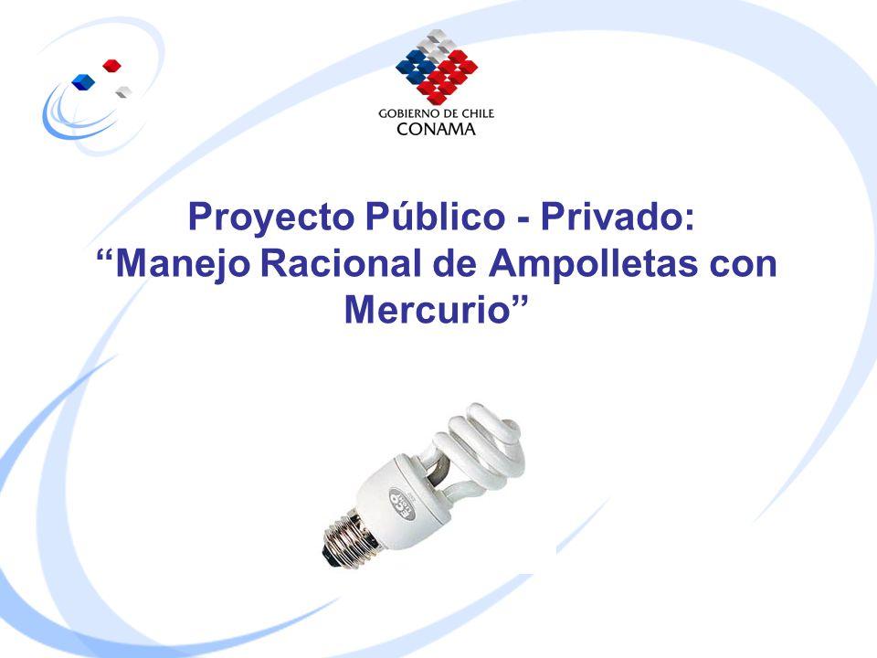 Proyecto Público - Privado: Manejo Racional de Ampolletas con Mercurio