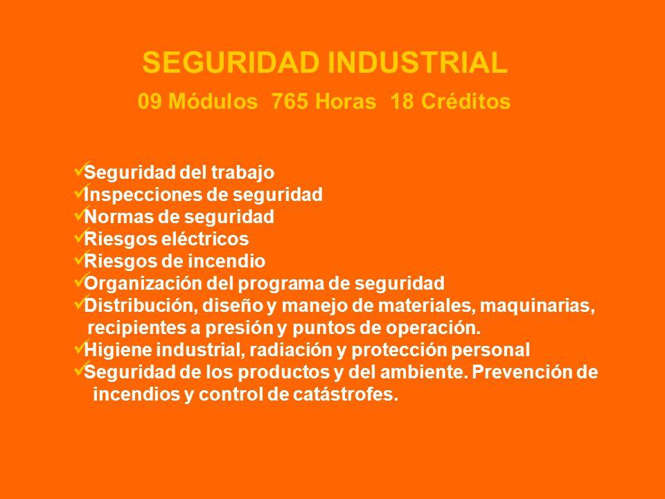 Seguridad del trabajo Inspecciones de seguridad Normas de seguridad Riesgos eléctricos Riesgos de incendio Organización del programa de seguridad Dist