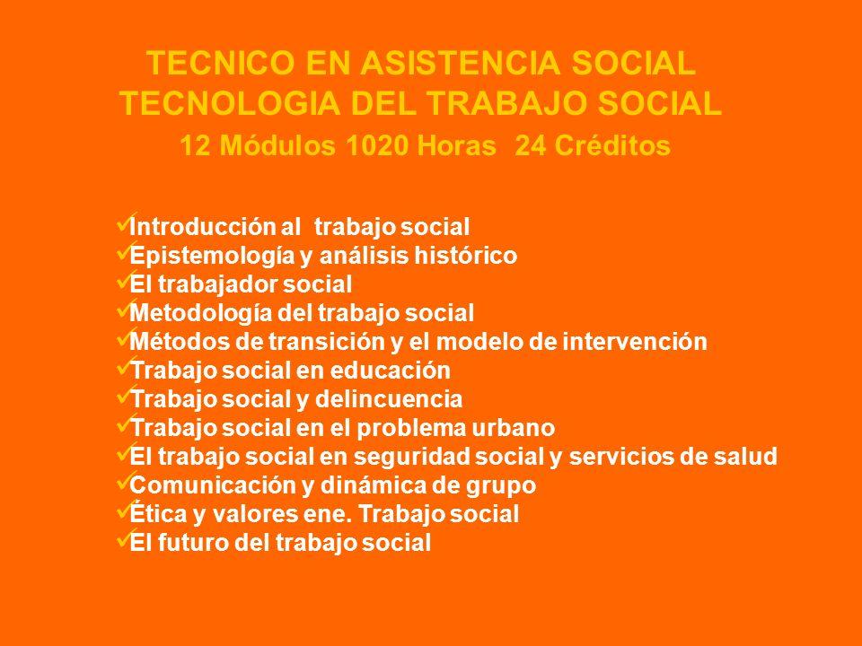 Introducción al trabajo social Epistemología y análisis histórico El trabajador social Metodología del trabajo social Métodos de transición y el model