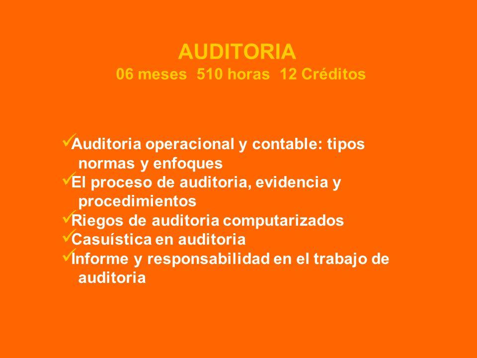 Auditoria operacional y contable: tipos normas y enfoques El proceso de auditoria, evidencia y procedimientos Riegos de auditoria computarizados Casuí