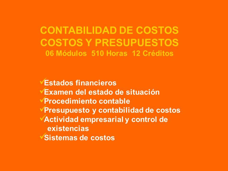 Estados financieros Examen del estado de situación Procedimiento contable Presupuesto y contabilidad de costos Actividad empresarial y control de exis
