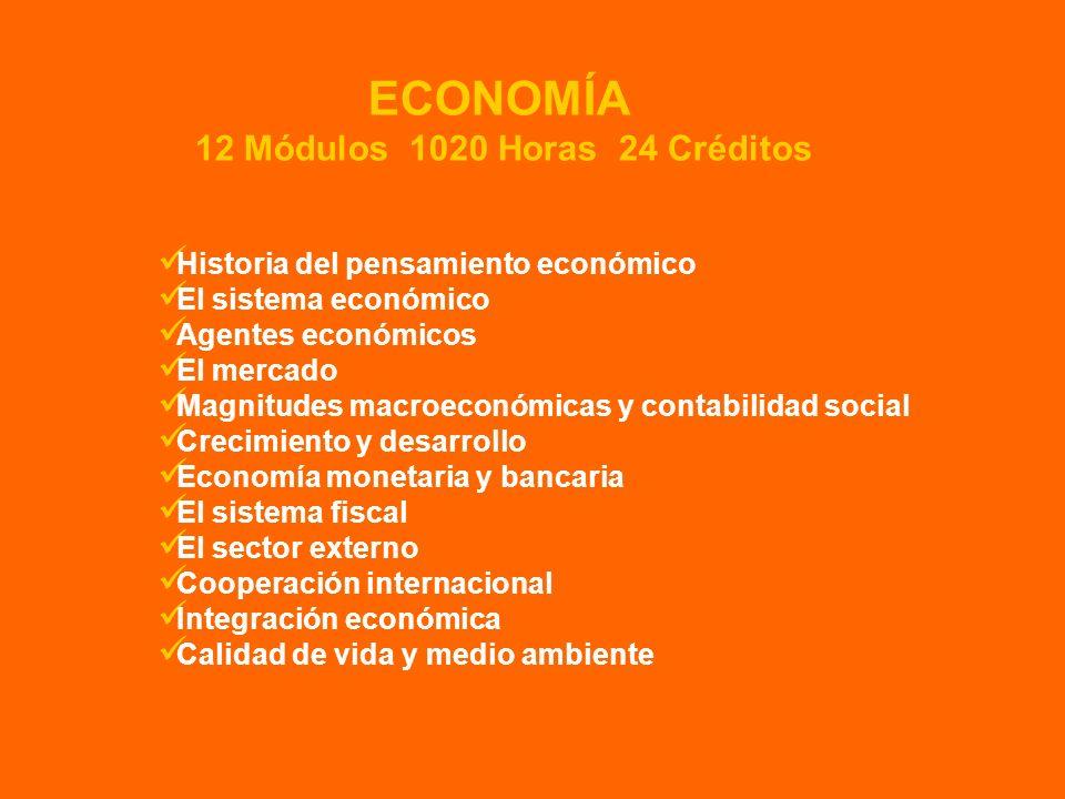 Historia del pensamiento económico El sistema económico Agentes económicos El mercado Magnitudes macroeconómicas y contabilidad social Crecimiento y d