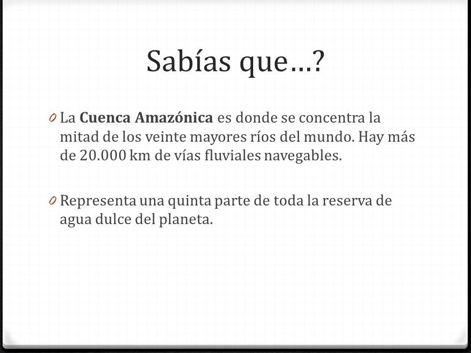 Sabías que…? 0 La Cuenca Amazónica es donde se concentra la mitad de los veinte mayores ríos del mundo. Hay más de 20.000 km de vías fluviales navegab
