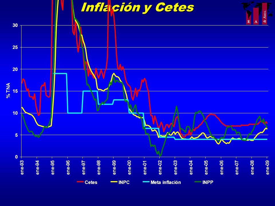 R A & Asoc. Inflación y Cetes 0 5 10 15 20 25 30 ene-93ene-94ene-95ene-96ene-97 ene-98 ene-99ene-00ene-01ene-02ene-03ene-04 ene-05 ene-06 ene-07ene-08