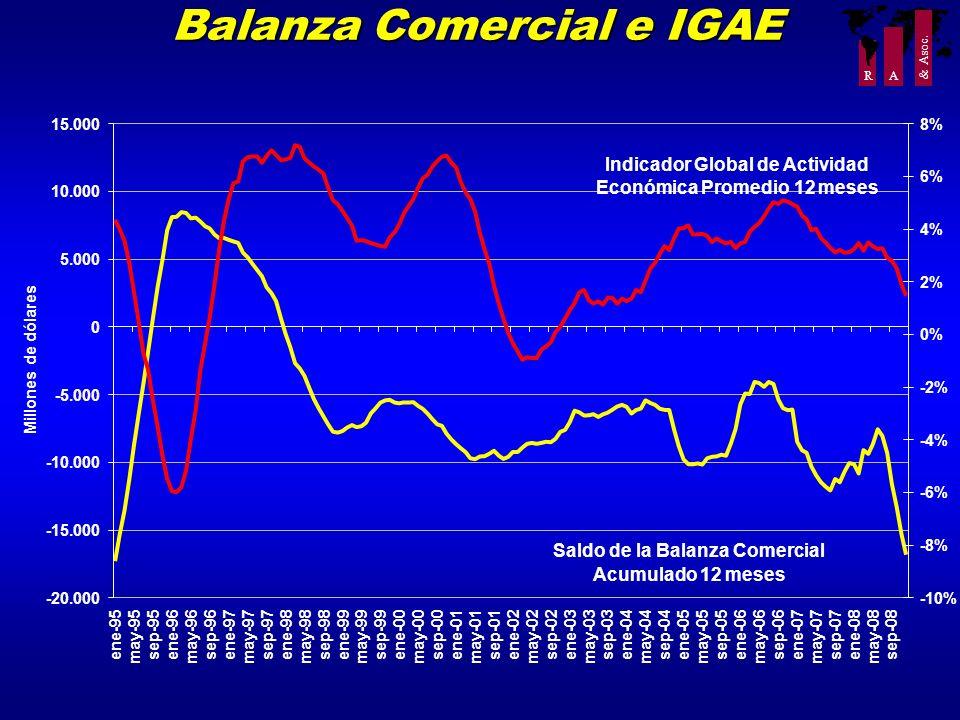 R A & Asoc. Balanza Comercial e IGAE -20.000 -15.000 -10.000 -5.000 0 5.000 10.000 15.000 ene-95 may-95 sep-95ene-96 may-96 sep-96ene-97 may-97 sep-97