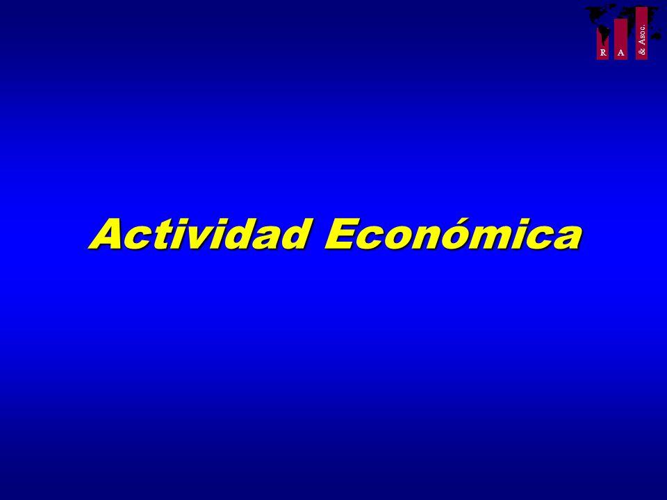 R A & Asoc. Actividad Económica