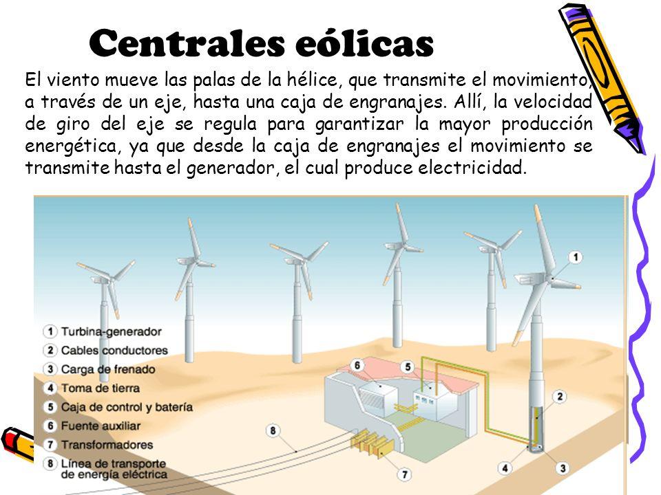 Centrales eólicas El viento mueve las palas de la hélice, que transmite el movimiento, a través de un eje, hasta una caja de engranajes. Allí, la velo