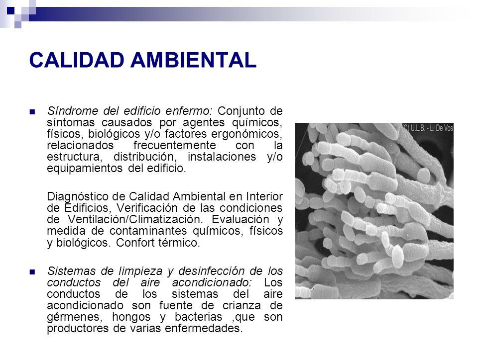 CALIDAD AMBIENTAL Síndrome del edificio enfermo: Conjunto de síntomas causados por agentes químicos, físicos, biológicos y/o factores ergonómicos, rel