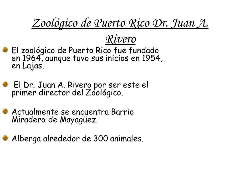 Zoológico de Puerto Rico Dr. Juan A.