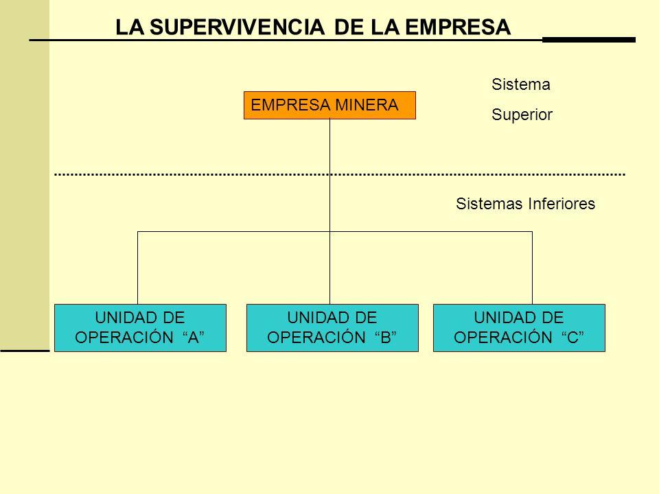 LA SUPERVIVENCIA DE LA EMPRESA EMPRESA MINERA UNIDAD DE OPERACIÓN A UNIDAD DE OPERACIÓN B UNIDAD DE OPERACIÓN C Sistema Superior Sistemas Inferiores