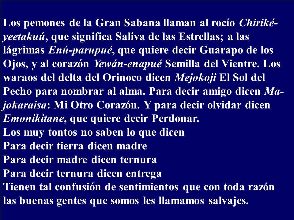 Los pemones de la Gran Sabana llaman al rocío Chiriké- yeetakuú, que significa Saliva de las Estrellas; a las lágrimas Enú-parupué, que quiere decir G