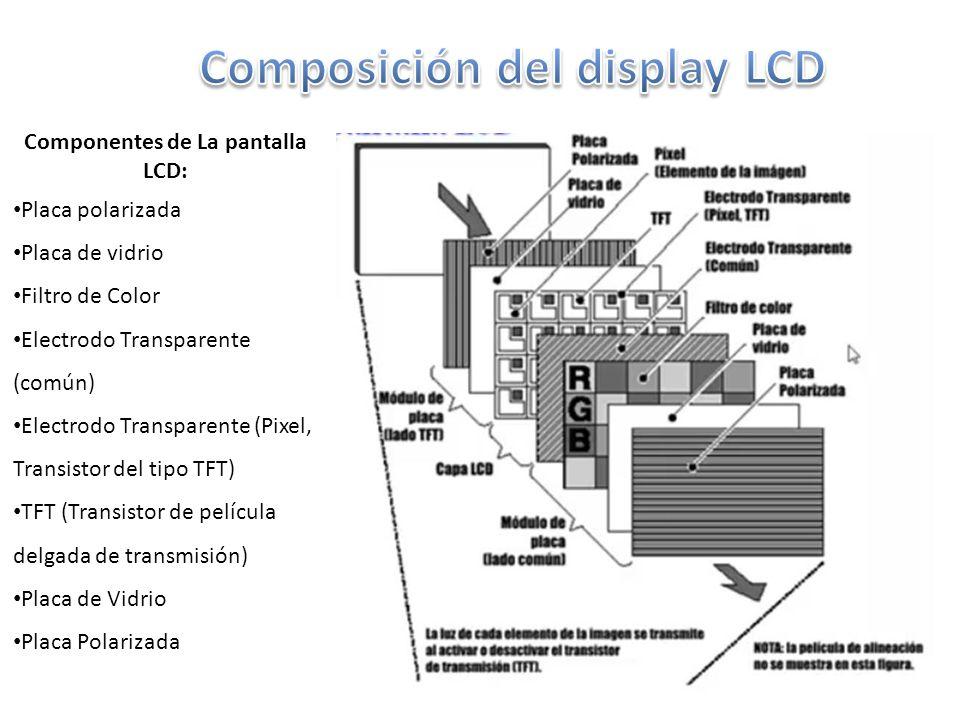 Componentes de La pantalla LCD: Placa polarizada Placa de vidrio Filtro de Color Electrodo Transparente (común) Electrodo Transparente (Pixel, Transistor del tipo TFT) TFT (Transistor de película delgada de transmisión) Placa de Vidrio Placa Polarizada