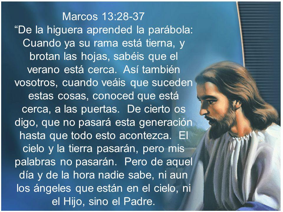 Marcos 13:28-37 De la higuera aprended la parábola: Cuando ya su rama está tierna, y brotan las hojas, sabéis que el verano está cerca. Así también vo