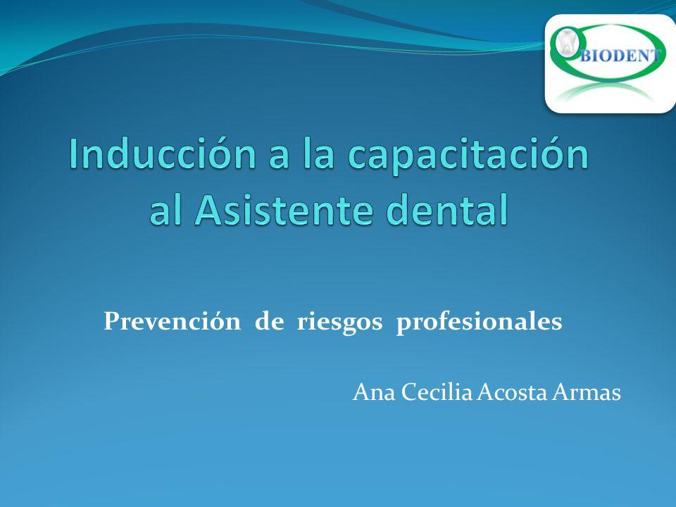 Prevención de riesgos profesionales Ana Cecilia Acosta Armas