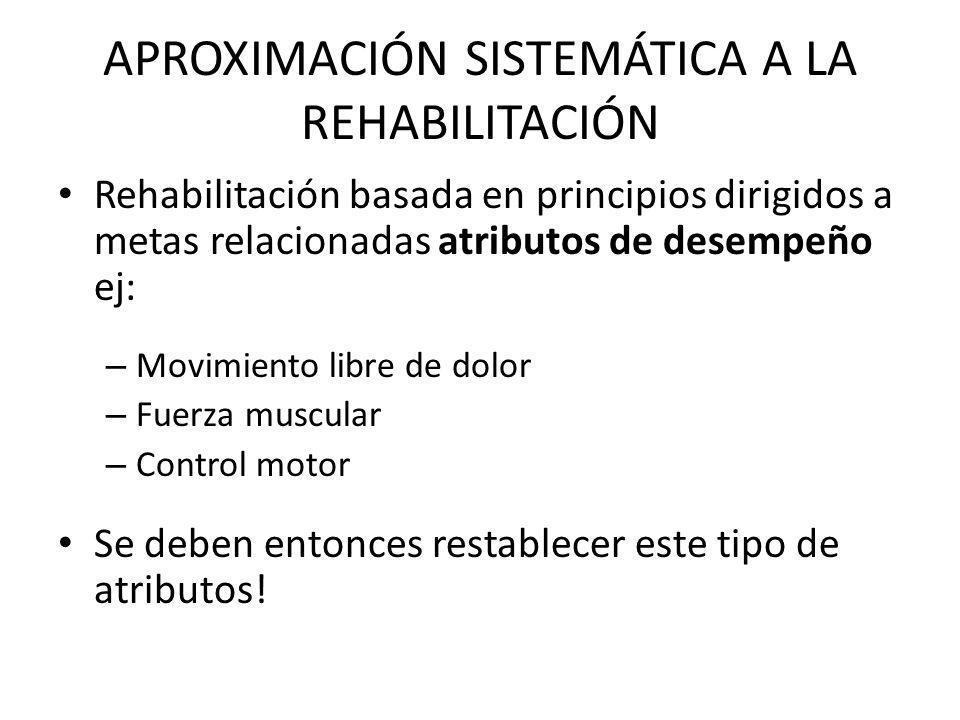 APROXIMACIÓN SISTEMÁTICA A LA REHABILITACIÓN Rehabilitación basada en principios dirigidos a metas relacionadas atributos de desempeño ej: – Movimient