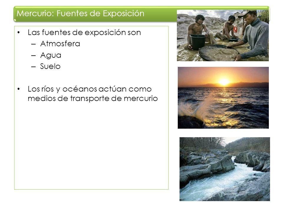 Las fuentes de exposición son – Atmosfera – Agua – Suelo Los ríos y océanos actúan como medios de transporte de mercurio Mercurio: Fuentes de Exposici