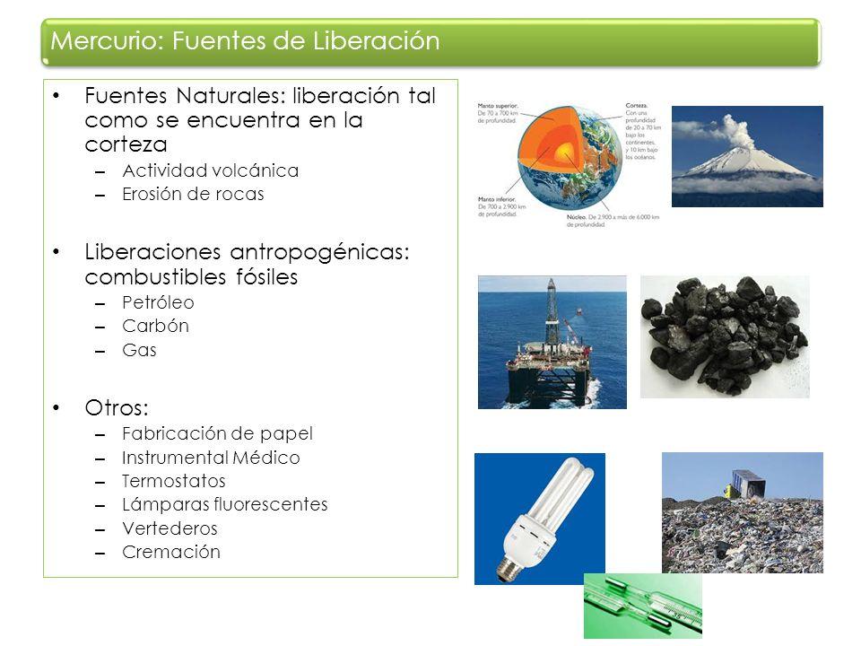 Fuentes Naturales: liberación tal como se encuentra en la corteza – Actividad volcánica – Erosión de rocas Liberaciones antropogénicas: combustibles f