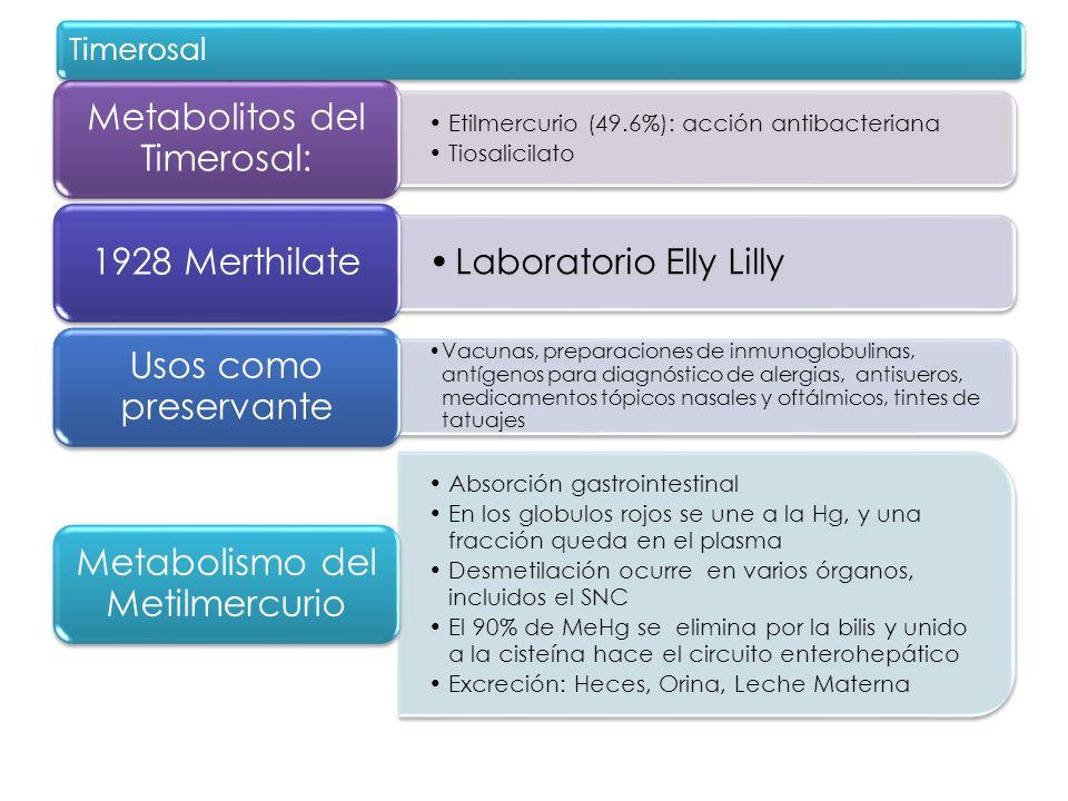 Etilmercurio (49.6%): acción antibacteriana Tiosalicilato Metabolitos del Timerosal: Laboratorio Elly Lilly 1928 Merthilate Vacunas, preparaciones de