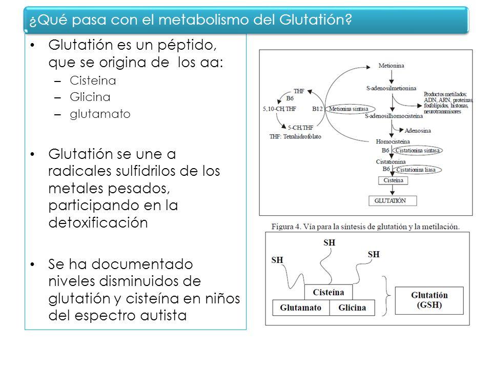 Glutatión es un péptido, que se origina de los aa: – Cisteina – Glicina – glutamato Glutatión se une a radicales sulfidrilos de los metales pesados, p