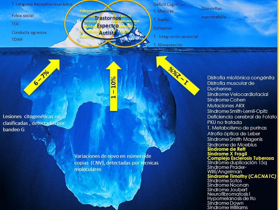 Deficit comunicación e interacción social Patrones de conducta., intereses, actividades repetitivos y restringidos Trastornos Espectro Autista Fobia s