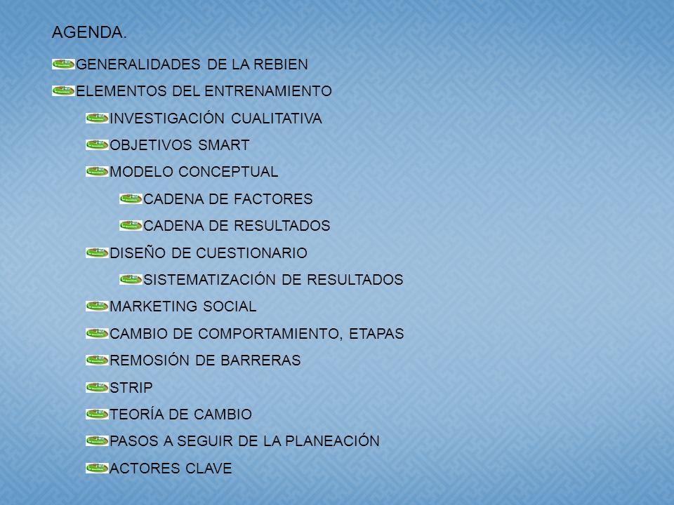 GENERALIDADES DE LA REBIEN ELEMENTOS DEL ENTRENAMIENTO INVESTIGACIÓN CUALITATIVA OBJETIVOS SMART MODELO CONCEPTUAL CADENA DE FACTORES CADENA DE RESULTADOS DISEÑO DE CUESTIONARIO SISTEMATIZACIÓN DE RESULTADOS MARKETING SOCIAL CAMBIO DE COMPORTAMIENTO, ETAPAS REMOSIÓN DE BARRERAS STRIP TEORÍA DE CAMBIO PASOS A SEGUIR DE LA PLANEACIÓN ACTORES CLAVE AGENDA.