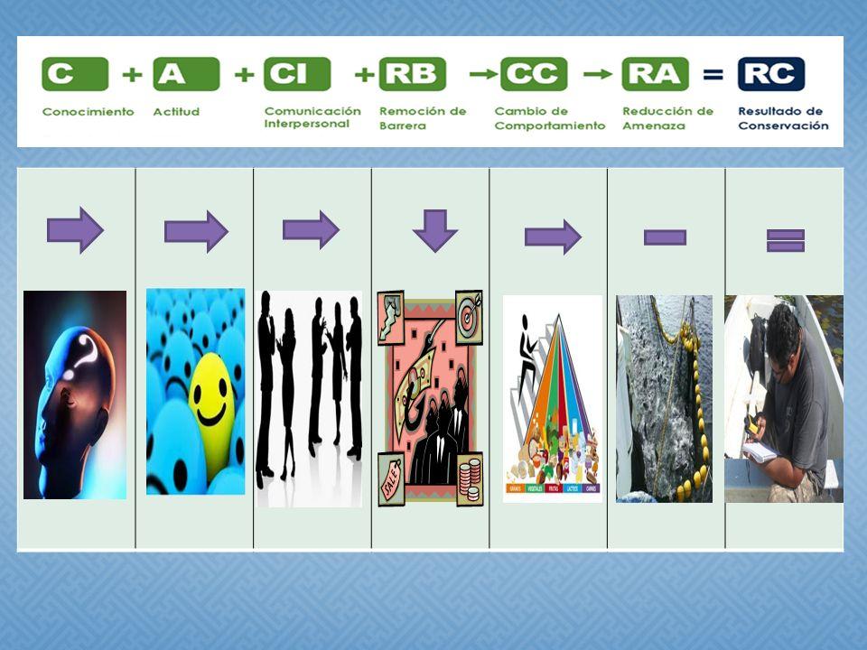Presentación ante el equipo de trabajo Inventario de pescadores locales/Base de datos Versión 1,2,3,4,5,6 Investigación cualitativa para validar la factibilidad de los incentivos Desarrollo y validación de ESTRIP Diseño y Validación de la Encuesta Planificación y Aplicación de la Encuesta Análisis de Datos de la Encuesta Aplicación y Análisis de Datos Sitio Control Objetivos SMART Finales Plan de Monitoreo Biológico Plan de Monitoreo de Mercadeo Social Resumen ejecutivo Borrador del Plan de Proyecto Línea de Base Biológica