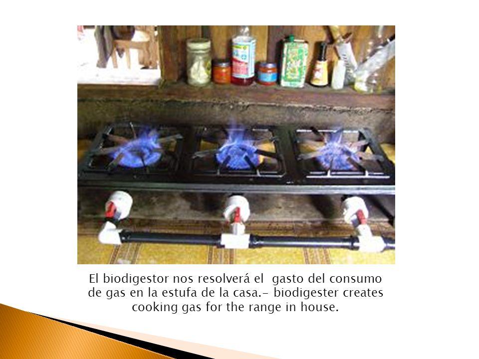 El biodigestor nos resolverá el gasto del consumo de gas en la estufa de la casa.- biodigester creates cooking gas for the range in house.