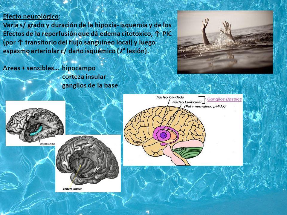 Efecto neurológico: Varia s/ grado y duración de la hipoxia- isquemia y de los Efectos de la reperfusión que dá edema citotoxico, PIC (por transitorio del flujo sanguíneo local) y luego espasmo arteriolar c/ daño isquémico (2° lesión).