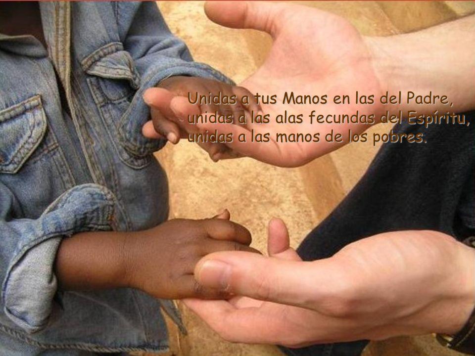 Que seamos, Señor, manos unidas en oración y en el don.