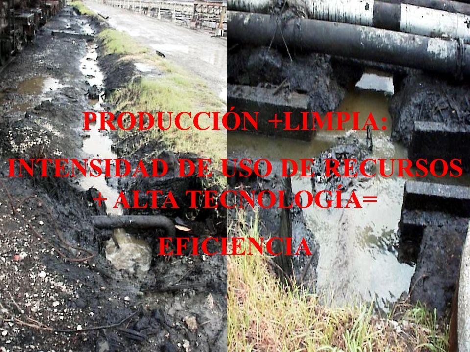 PRODUCCIÓN +LIMPIA: INTENSIDAD DE USO DE RECURSOS + ALTA TECNOLOGÍA= EFICIENCIA