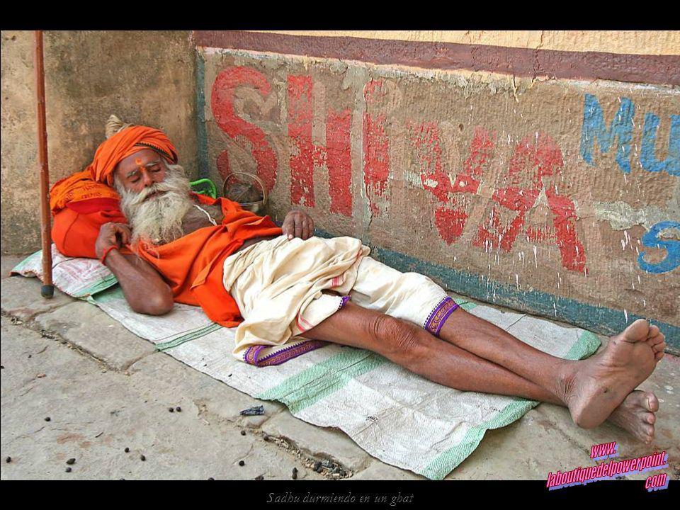 Panorámica de los ghats