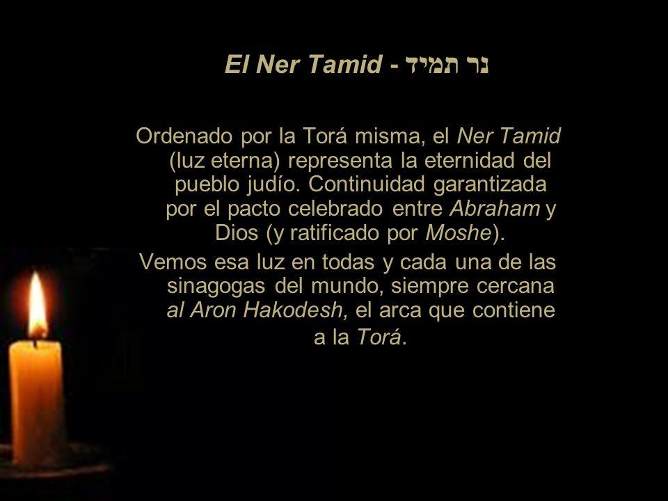 El Ner Tamid - נר תמיד Ordenado por la Torá misma, el Ner Tamid (luz eterna) representa la eternidad del pueblo judío. Continuidad garantizada por el