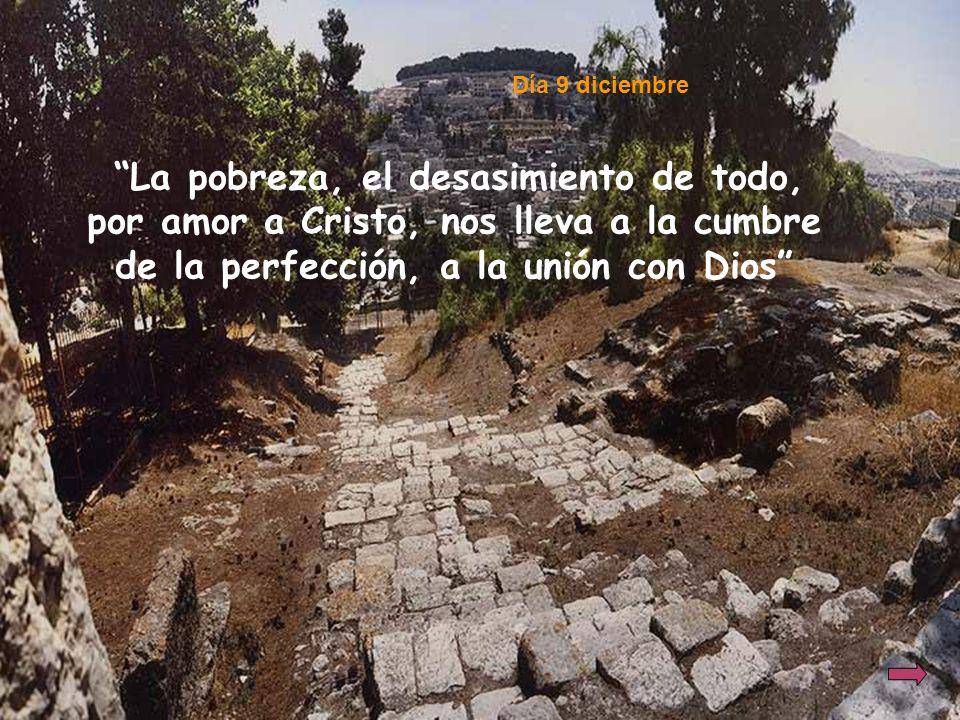 La pobreza, el desasimiento de todo, por amor a Cristo, nos lleva a la cumbre de la perfección, a la unión con Dios Día 9 diciembre