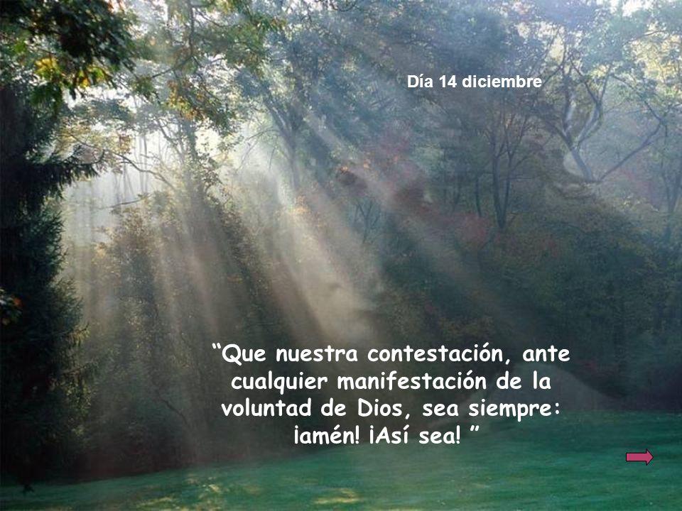 Que nuestra contestación, ante cualquier manifestación de la voluntad de Dios, sea siempre: ¡amén! ¡Así sea! Día 14 diciembre