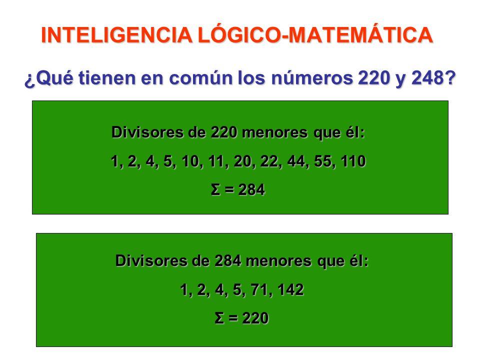 INTELIGENCIA LÓGICO-MATEMÁTICA ¿Qué tienen en común los números 220 y 248? Divisores de 220 menores que él: 1, 2, 4, 5, 10, 11, 20, 22, 44, 55, 110 Σ
