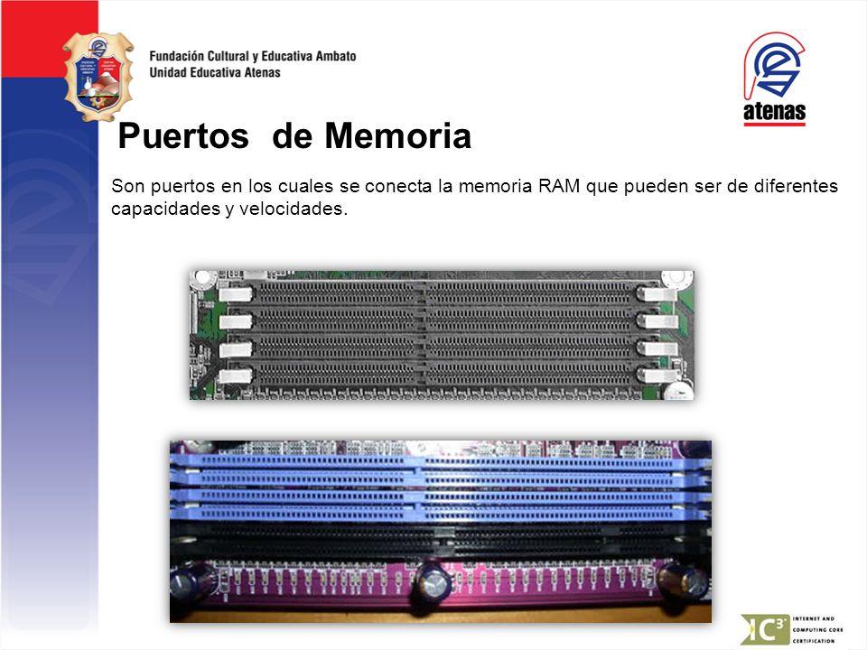 Puertos de Memoria Son puertos en los cuales se conecta la memoria RAM que pueden ser de diferentes capacidades y velocidades.