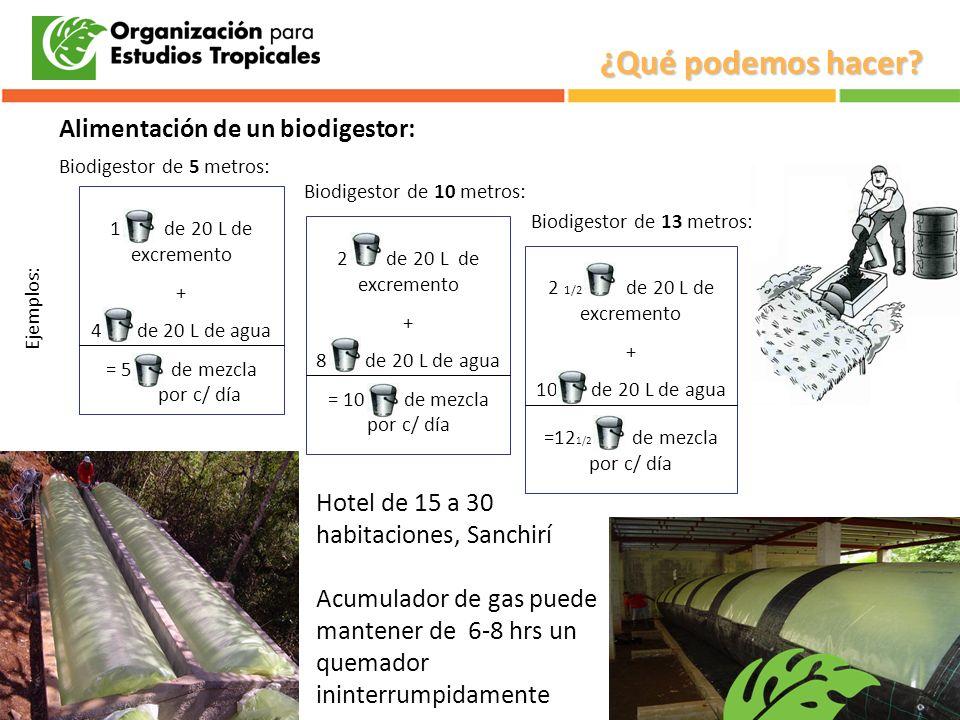 Alimentación de un biodigestor: 1 de 20 L de excremento + 4 de 20 L de agua = 5 de mezcla por c/ día 2 de 20 L de excremento + 8 de 20 L de agua = 10