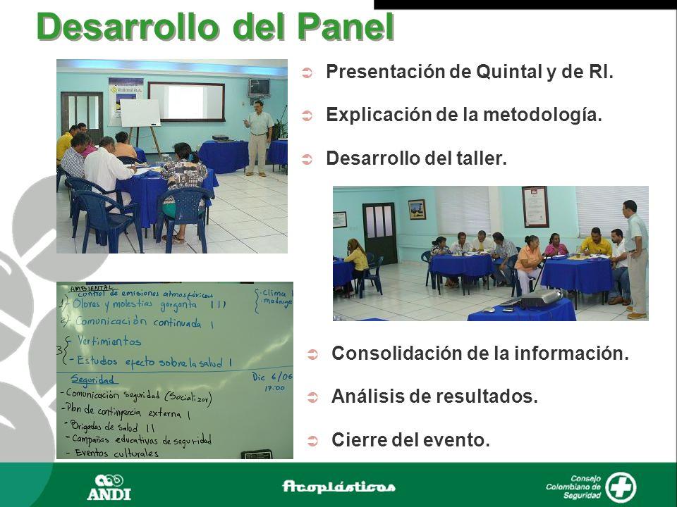 Presentación de Quintal y de RI. Explicación de la metodología. Desarrollo del taller. Desarrollo del Panel Consolidación de la información. Análisis