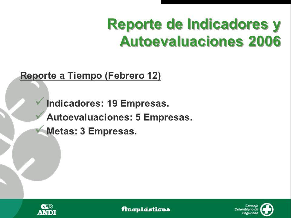 Reporte de Indicadores y Autoevaluaciones 2006 Reporte a Tiempo (Febrero 12) Indicadores: 19 Empresas. Autoevaluaciones: 5 Empresas. Metas: 3 Empresas