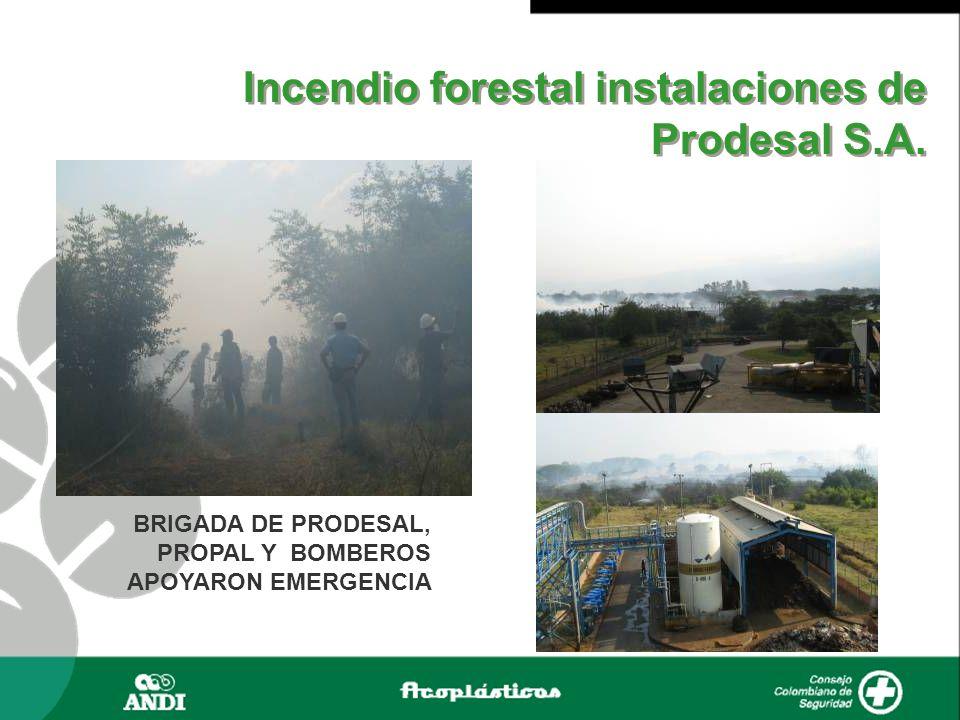 Incendio forestal instalaciones de Prodesal S.A. BRIGADA DE PRODESAL, PROPAL Y BOMBEROS APOYARON EMERGENCIA