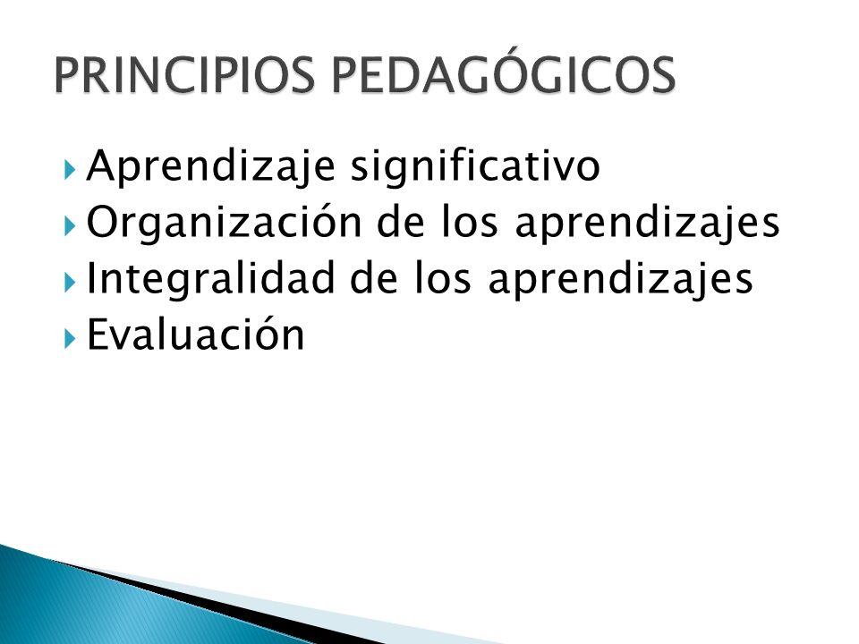 Aprendizaje significativo Organización de los aprendizajes Integralidad de los aprendizajes Evaluación