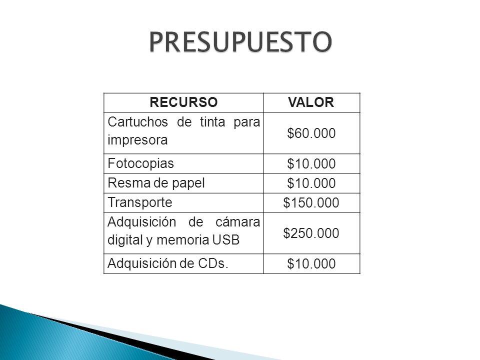 RECURSOVALOR Cartuchos de tinta para impresora $60.000 Fotocopias $10.000 Resma de papel $10.000 Transporte $150.000 Adquisición de cámara digital y m