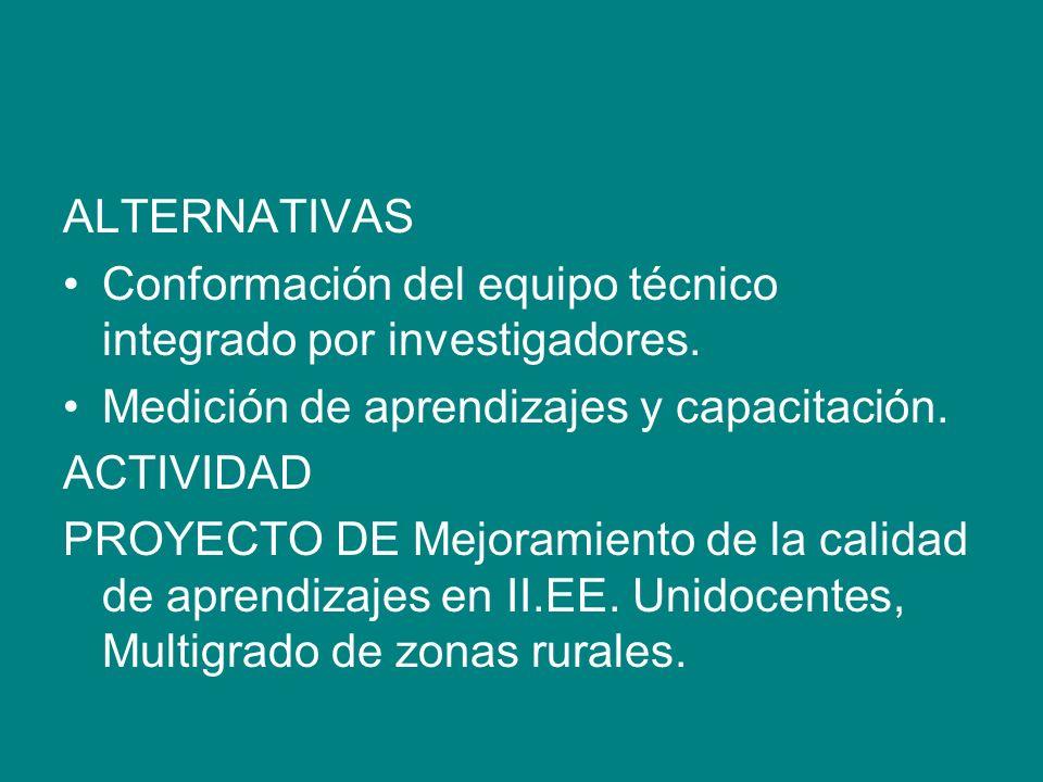ALTERNATIVAS Conformación del equipo técnico integrado por investigadores. Medición de aprendizajes y capacitación. ACTIVIDAD PROYECTO DE Mejoramiento
