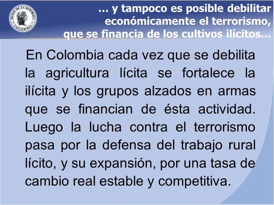 … y tampoco es posible debilitar económicamente el terrorismo, que se financia de los cultivos ilícitos… En Colombia cada vez que se debilita la agric