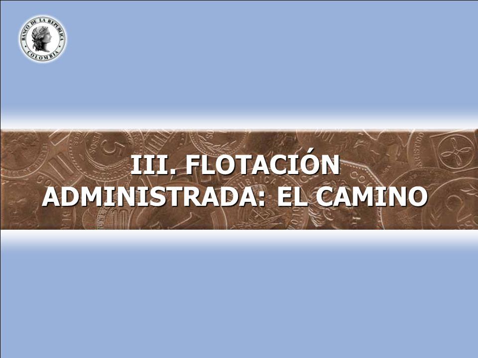 III. FLOTACIÓN ADMINISTRADA: EL CAMINO