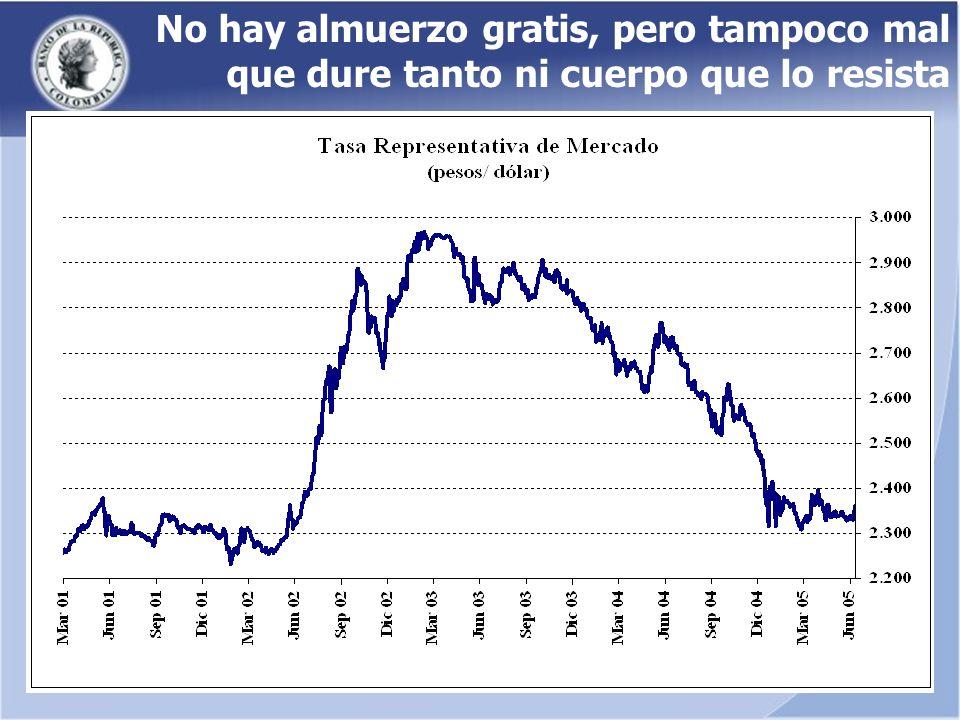 La magnitud de la apreciación durante los dos últimos años En 2004 la apreciación nominal del peso fue 14%.